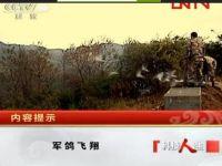 建军节:重温《军鸽飞翔》经典视频